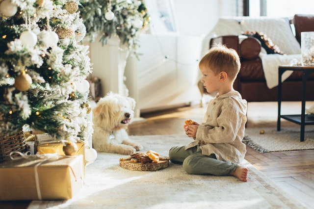 Niño con el árbol de Navidad